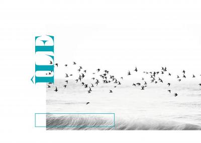 Île Magazine